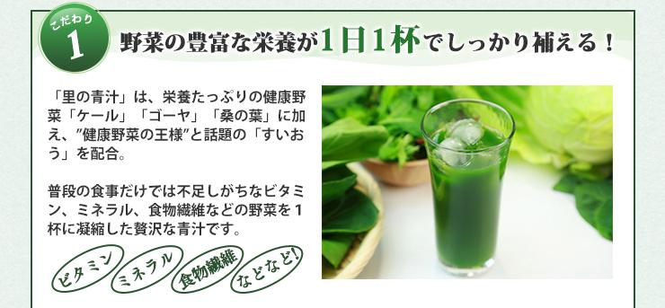 野菜の豊富な栄養が1日1杯でしっかり補える!