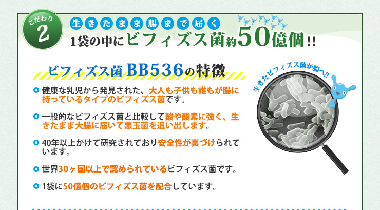 1袋の中にビフィズス菌約50億個!!
